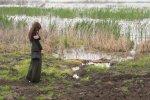 Swamp on the Lk. Dojran